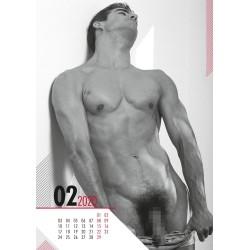 PIN-UP Kalender »Real Cocks«